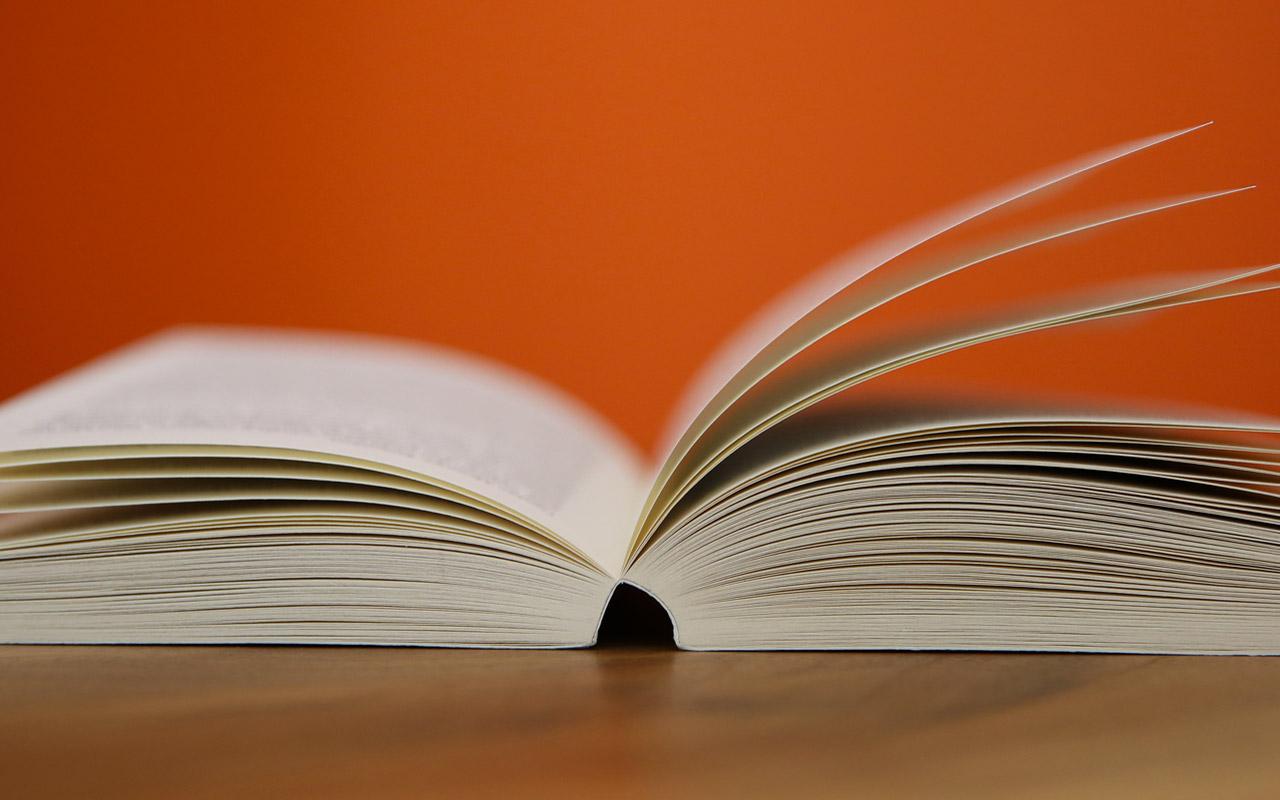 Un Mondo di Libri, Seregno